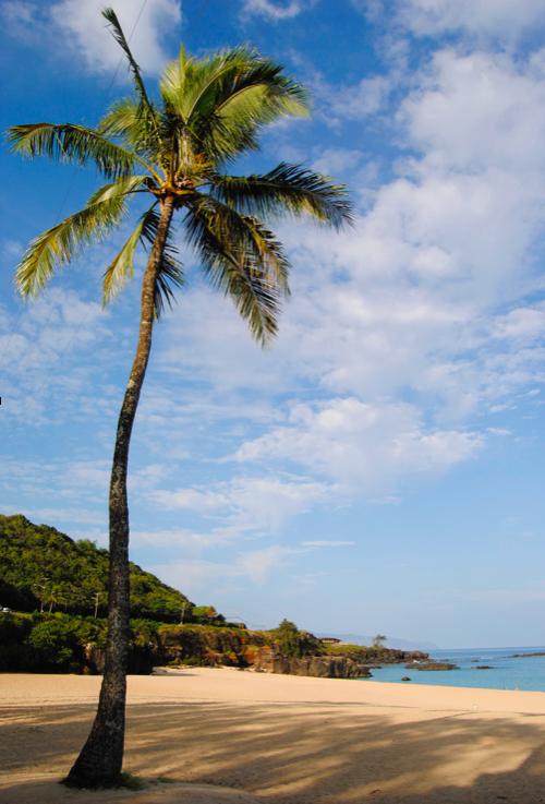 charla – HAWAII