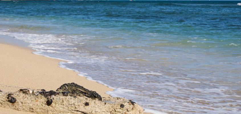 charla – HAWAII (El Hierro)